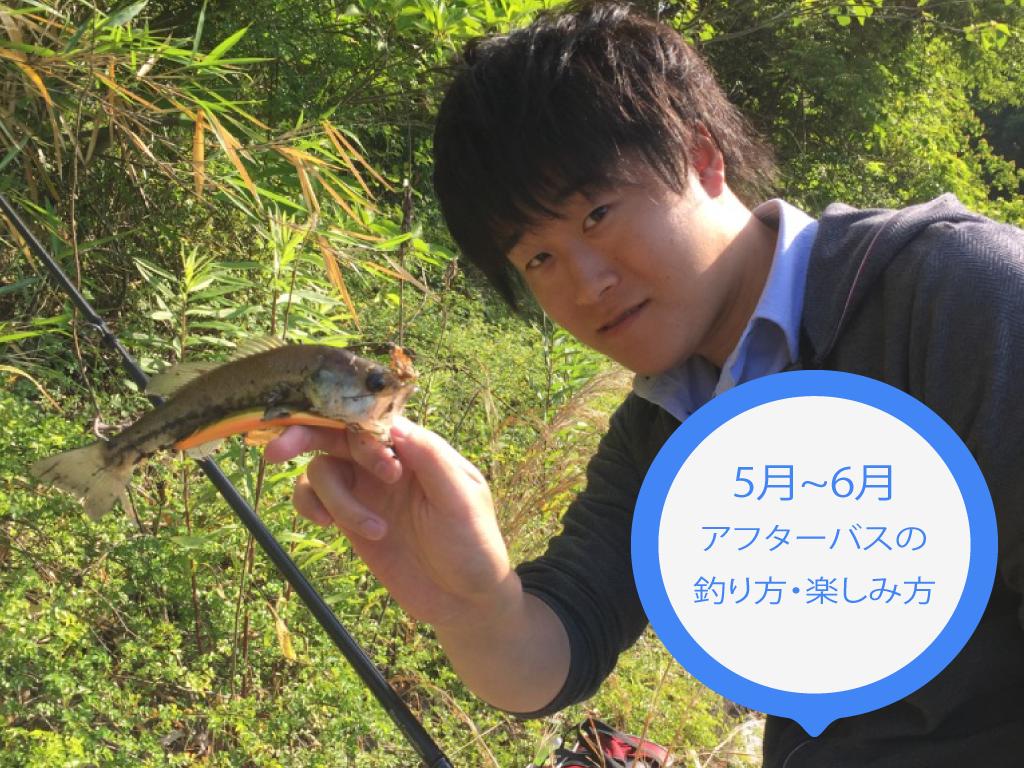 【バス釣り】アフター時期の楽しみ方