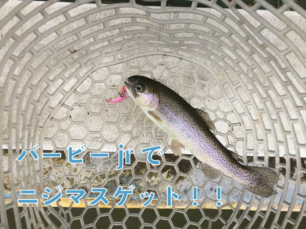 【トラウト】GWはとしまえんでお手軽魚釣り!