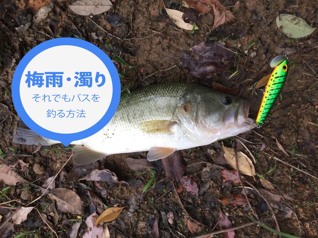 【バス釣り】梅雨の濁りでもバスを釣る方法