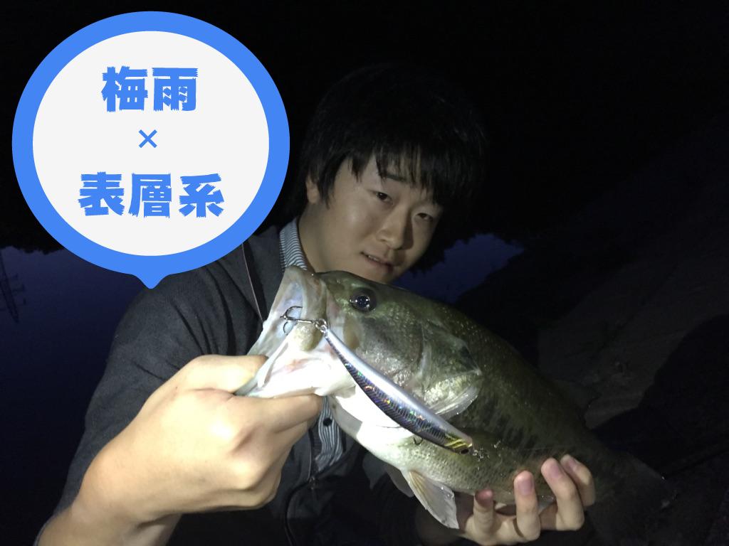 【バス釣り】梅雨は表層系ルアーで釣ろう