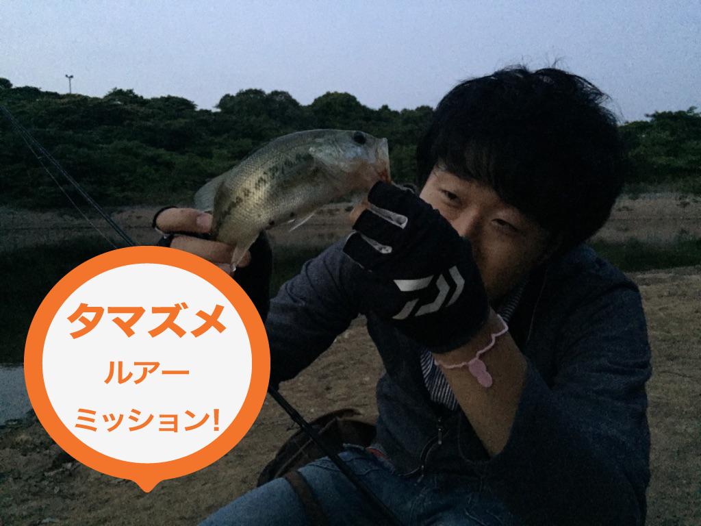 【バス釣り】夕マズメのルアーミッション!