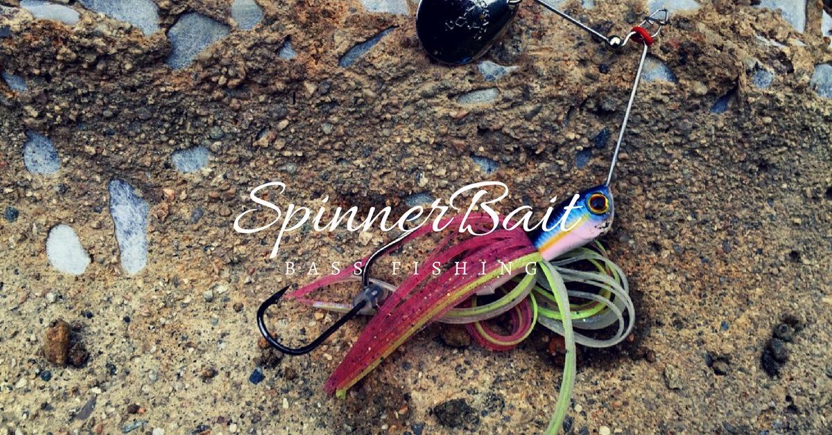 【バス釣り】スピナーベイトの釣果アップに必要な2つのポイント!