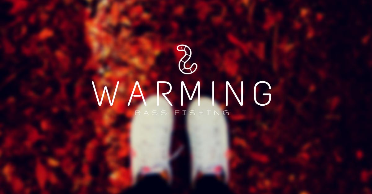 秋のオススメワームサムネ