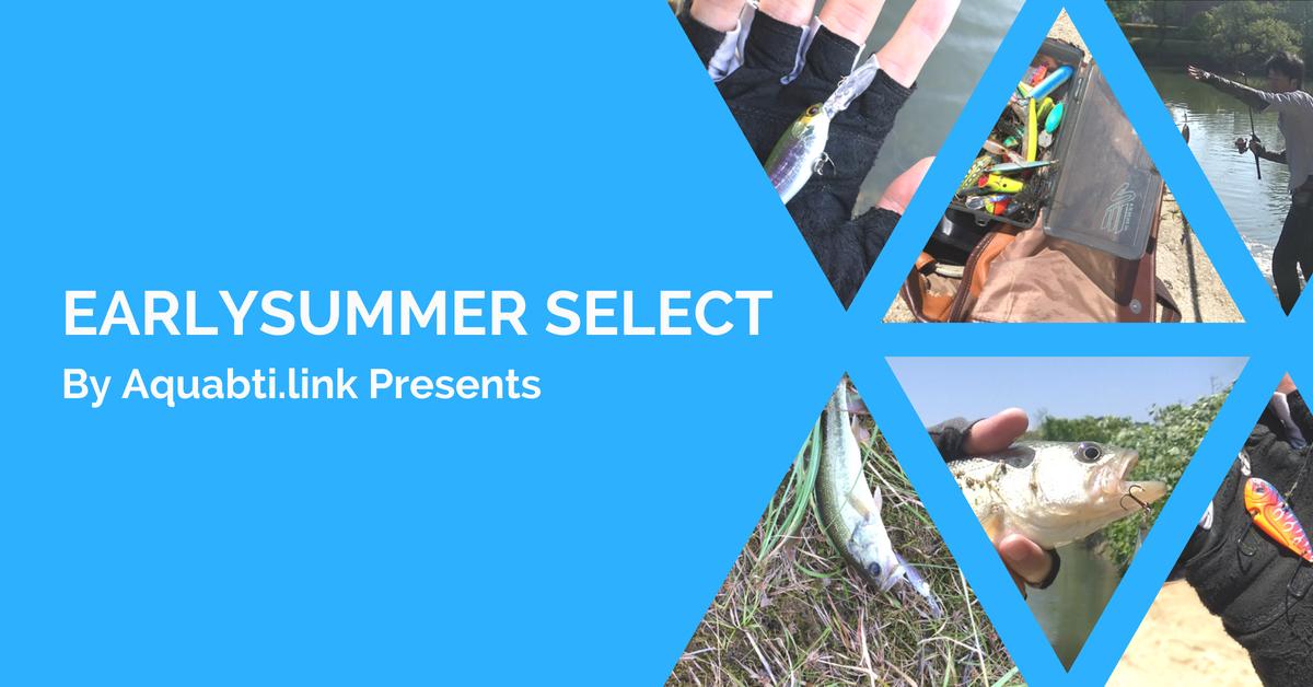 【バス釣り】初夏に魚を釣りたい初心者必見!時期の変わり目にオススメのルアーを3つご紹介!