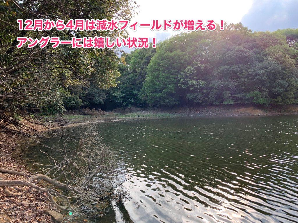 減水した野池