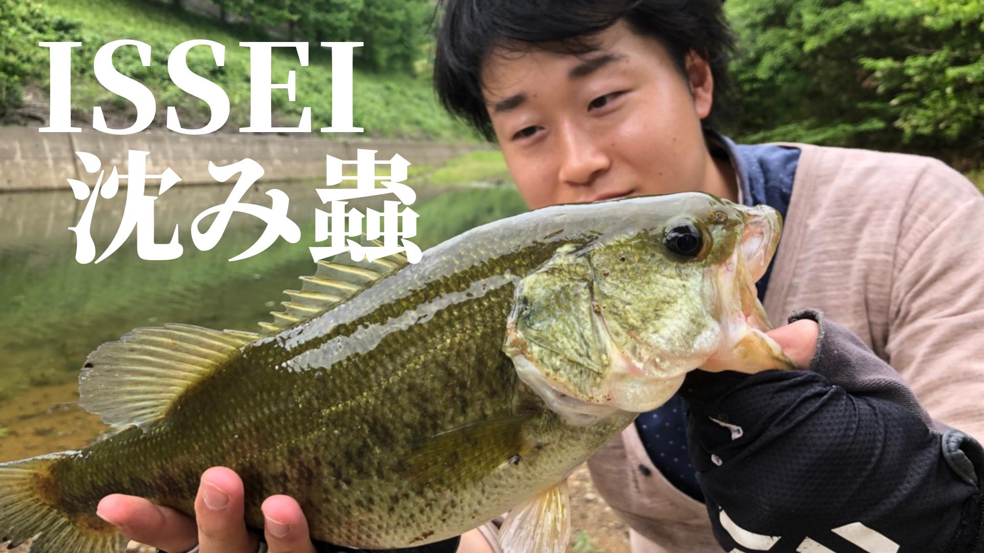 issei沈み蟲の釣れるバックスライドを体感せよ!使い方とセッティングをご紹介!