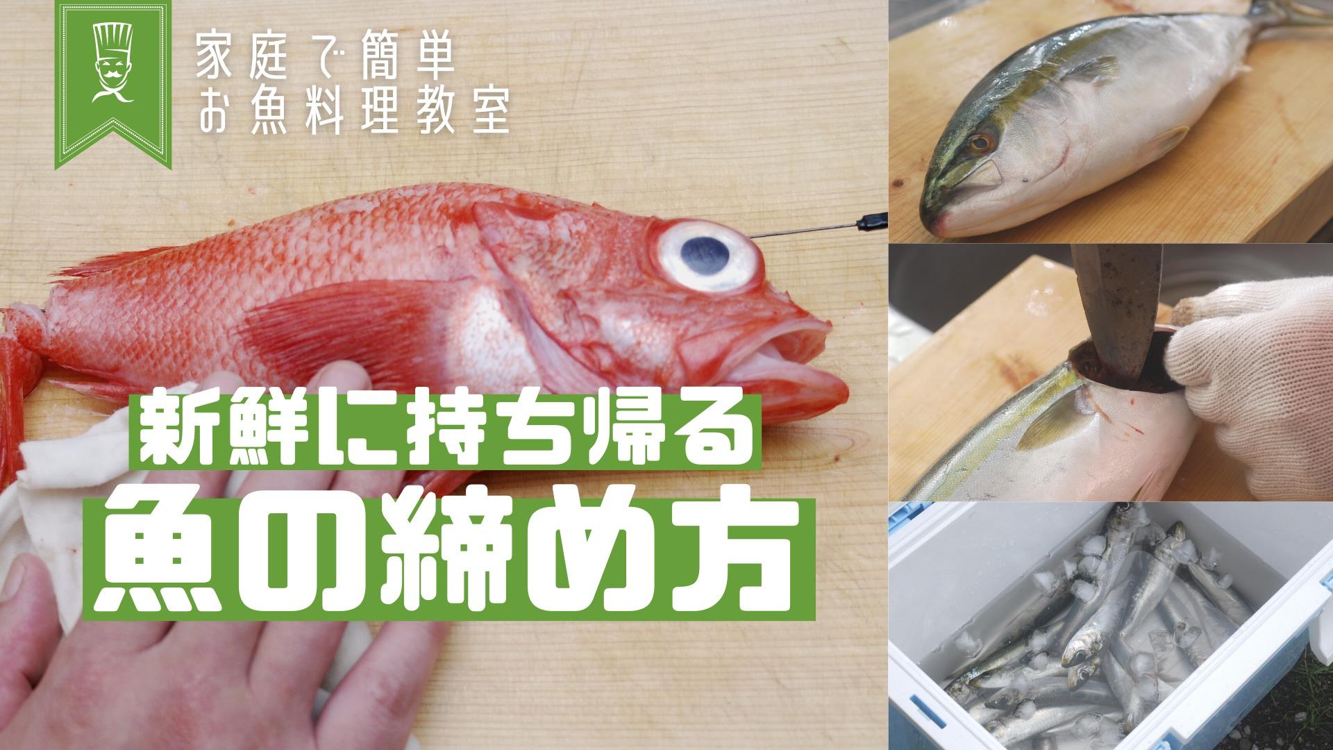 魚を締めるサムネ