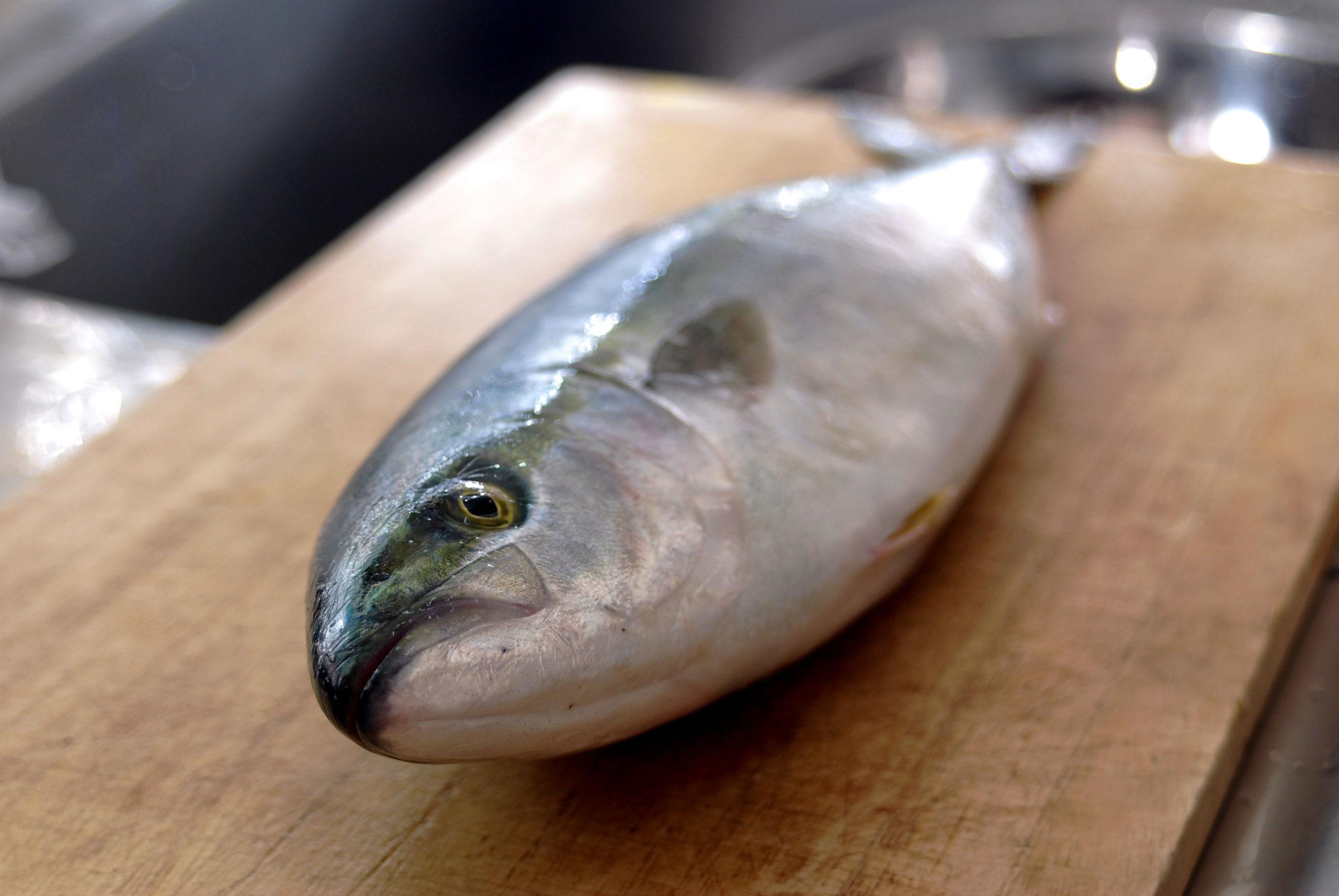 魚の三枚おろしの画像