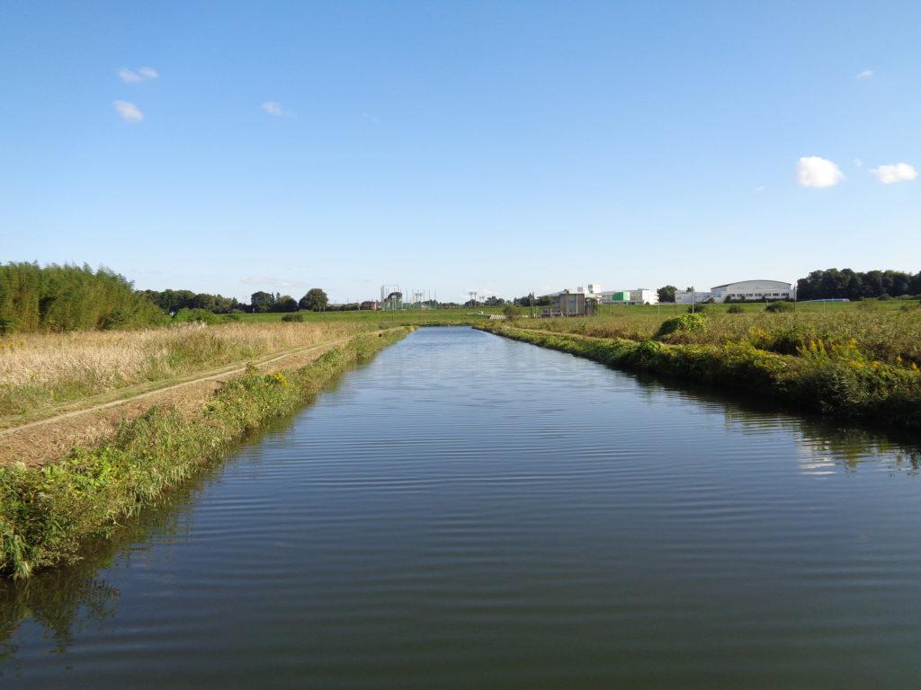 冬の利根川水系の写真