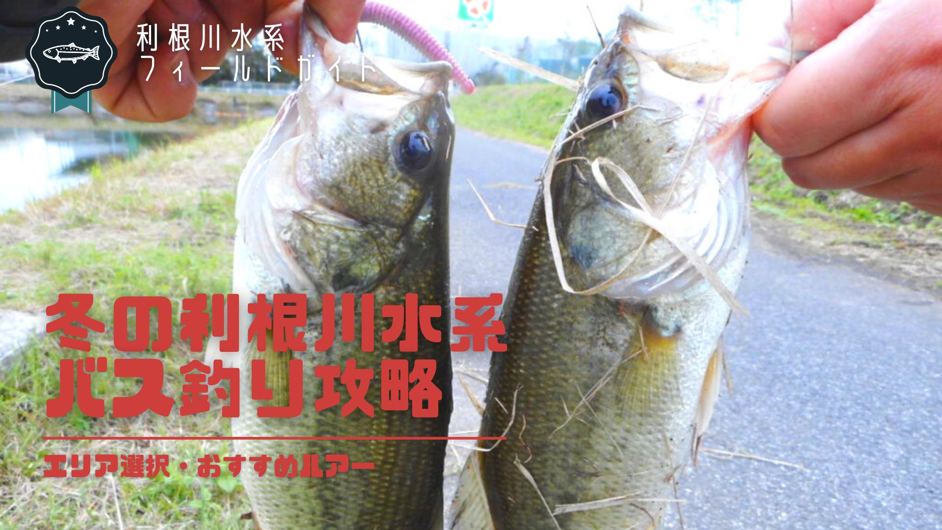冬の利根川水系バス釣り攻略_サムネ画像