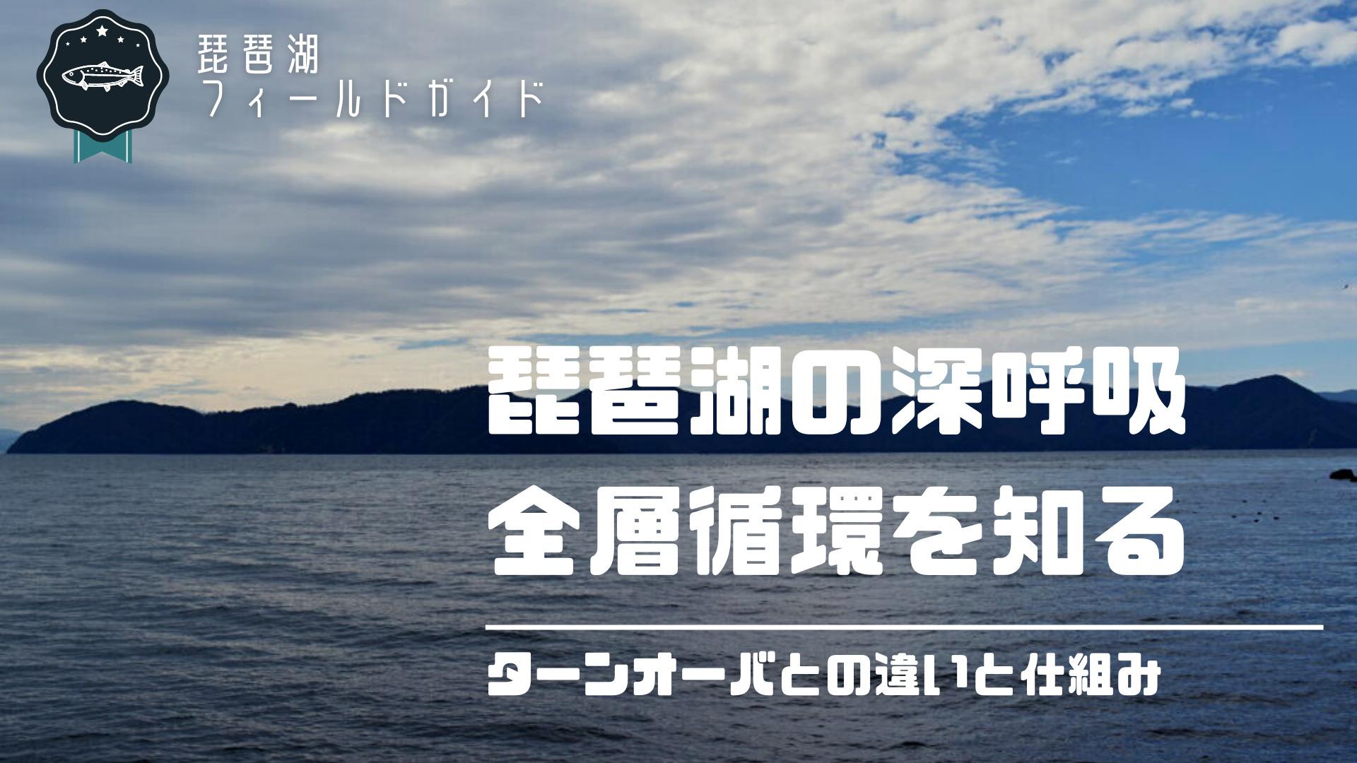 琵琶湖全層循環の解説記事_サムネ