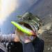 【バス釣り】ミノーで釣るための絶対覚えておきたい3つの使い方!