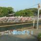 【バス釣り】北山ダムのバス釣りと自然をボートで満喫しよう!