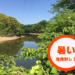 【バス釣り】猛暑をミノーで攻略!暑くても真昼間に釣る方法とは?