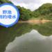 【バス釣り】梅雨の増水時はワームで中層狙いがおすすめ!